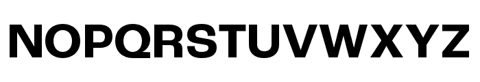 Roc Grotesk ExtraWide Bold Font UPPERCASE