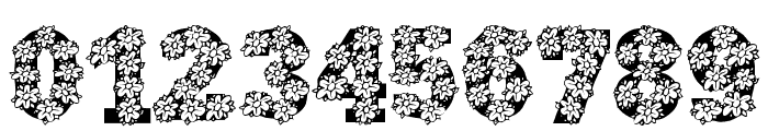 AlphaFlowers Font OTHER CHARS