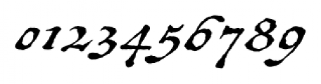Antiquarian Scribe Regular Font OTHER CHARS