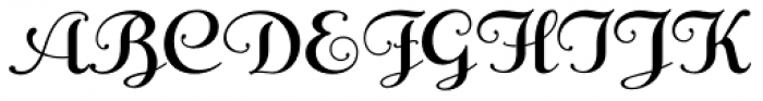 Anna Nicole NF Font UPPERCASE