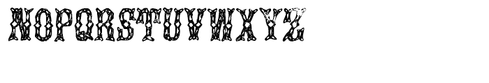 Augustine Regular Font UPPERCASE
