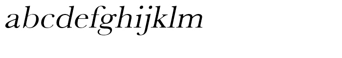 Baskerville Regular Wide Oblique Font LOWERCASE