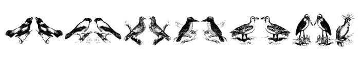 birds a Font LOWERCASE