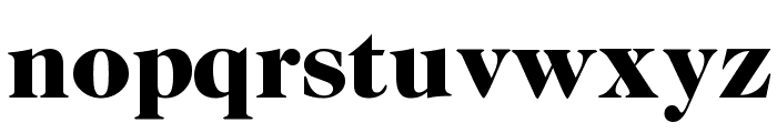 CaslonTwoBlackSSK Font LOWERCASE
