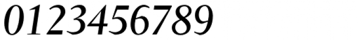 Conqueror Italic Font OTHER CHARS