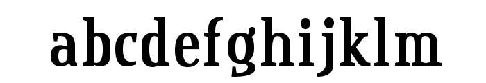 Credit Valley Bold Font LOWERCASE