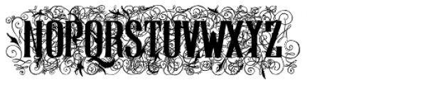 Display Of Character Illuminated BOLD Font LOWERCASE