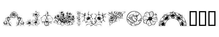 Dover Floral and Design II Font LOWERCASE