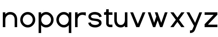 Dustismo  Bold Font LOWERCASE