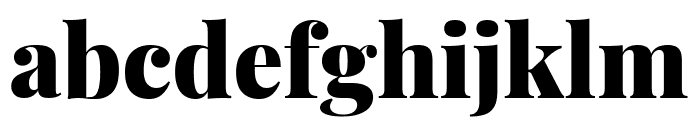 Playfair Display 900 Font LOWERCASE