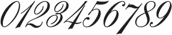 Handsome Script Extra Bold otf (700) Font OTHER CHARS