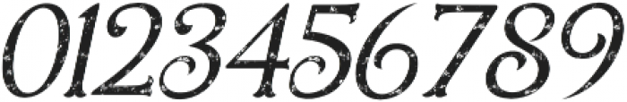 Holiday Present Rough Italic otf (400) Font OTHER CHARS