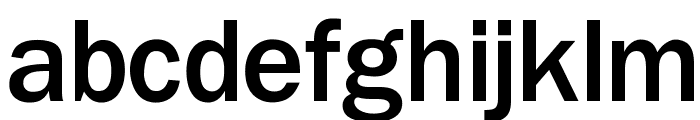 OPTIFranklinGothic-Medium Font LOWERCASE
