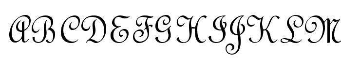 OPTIFrench-Script Font UPPERCASE