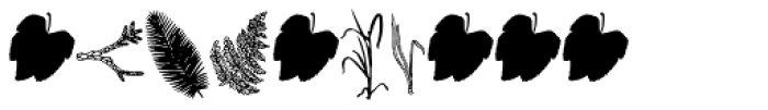 Riipale Leaf Font OTHER CHARS