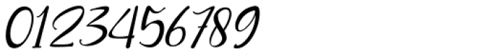 Roberto Italic Font OTHER CHARS