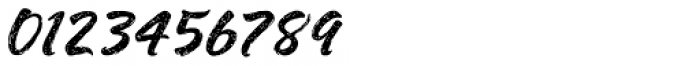 Shavano Rough Font OTHER CHARS