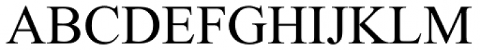 Times New Roman World Regular Font UPPERCASE