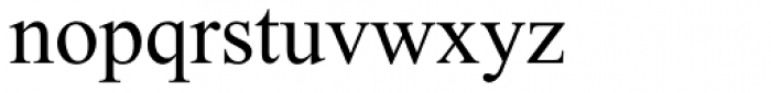 Times New Roman World Regular Font LOWERCASE