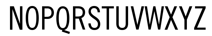 TraditionellSans-Normal Font UPPERCASE