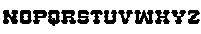 U.S. Marshal Regular Font LOWERCASE