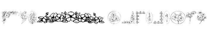 Wildflower Font LOWERCASE