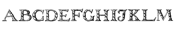 WolnoughCapitals Font LOWERCASE