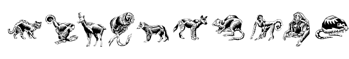 ZigzagZooAnimal Font OTHER CHARS