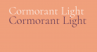 Cormorant Light