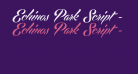 Echinos Park Script - PERSONAL USE ONLY