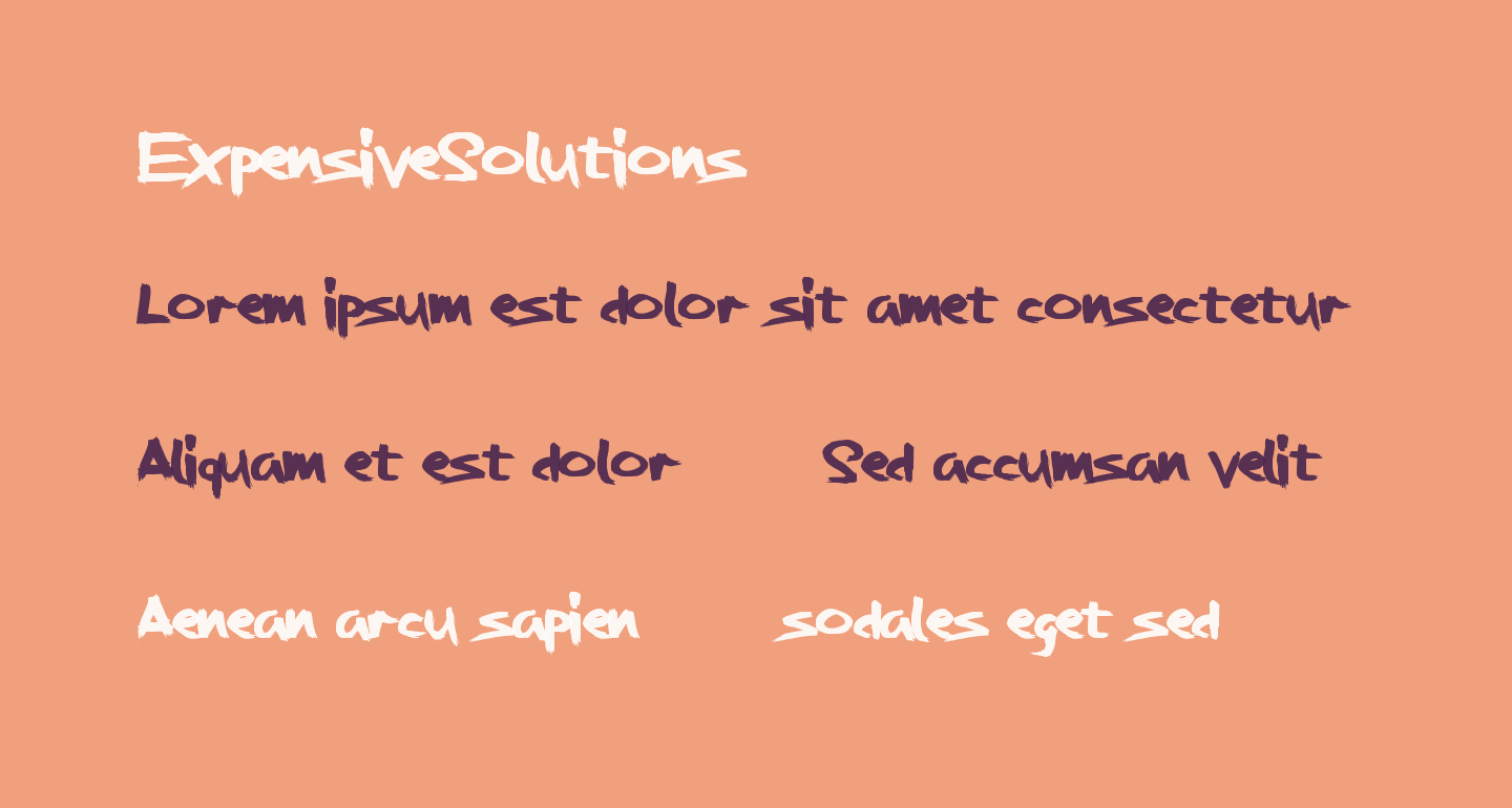 ExpensiveSolutions