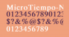 MicroTiempo-Normal Bold