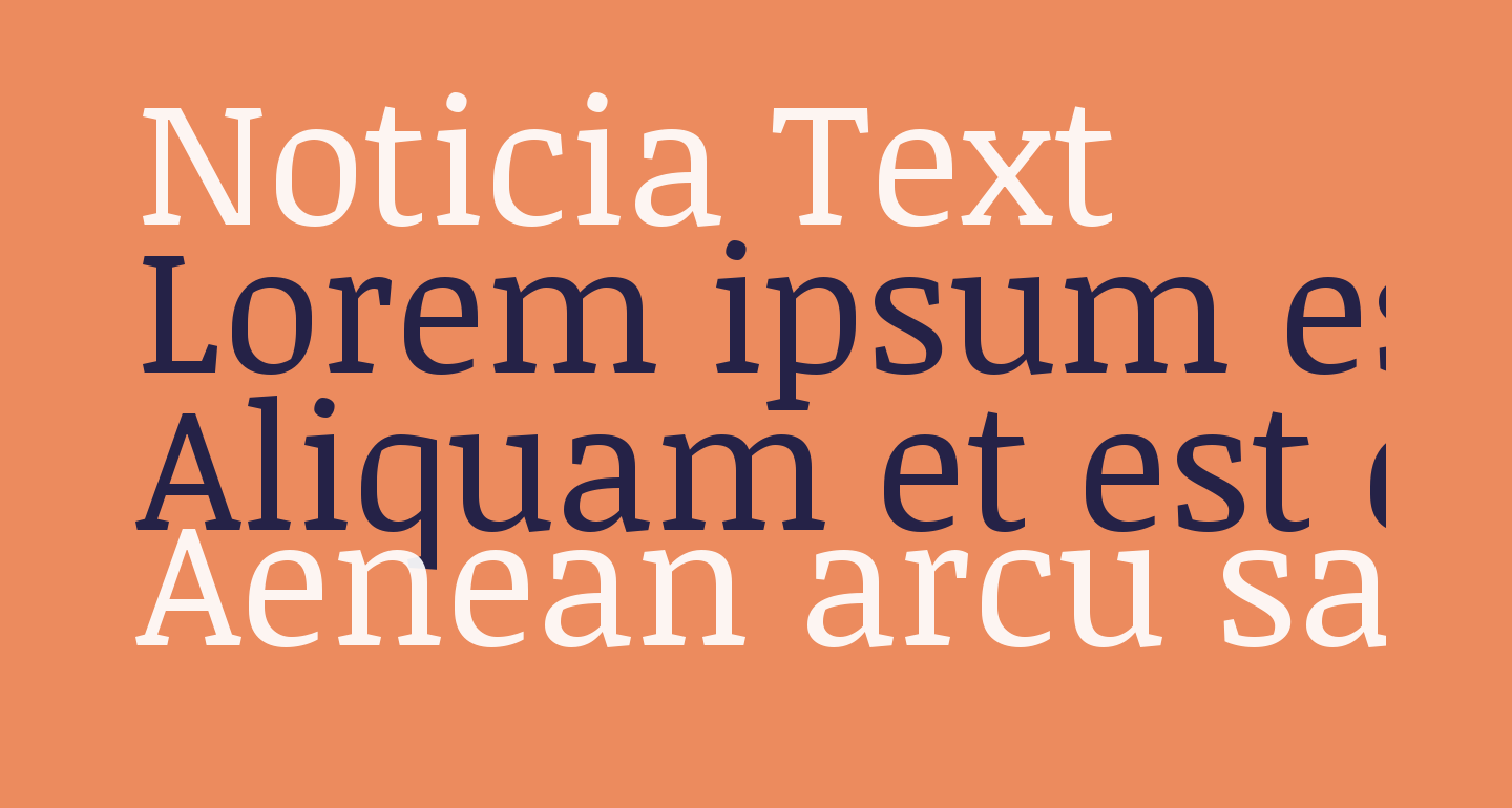 Noticia Text