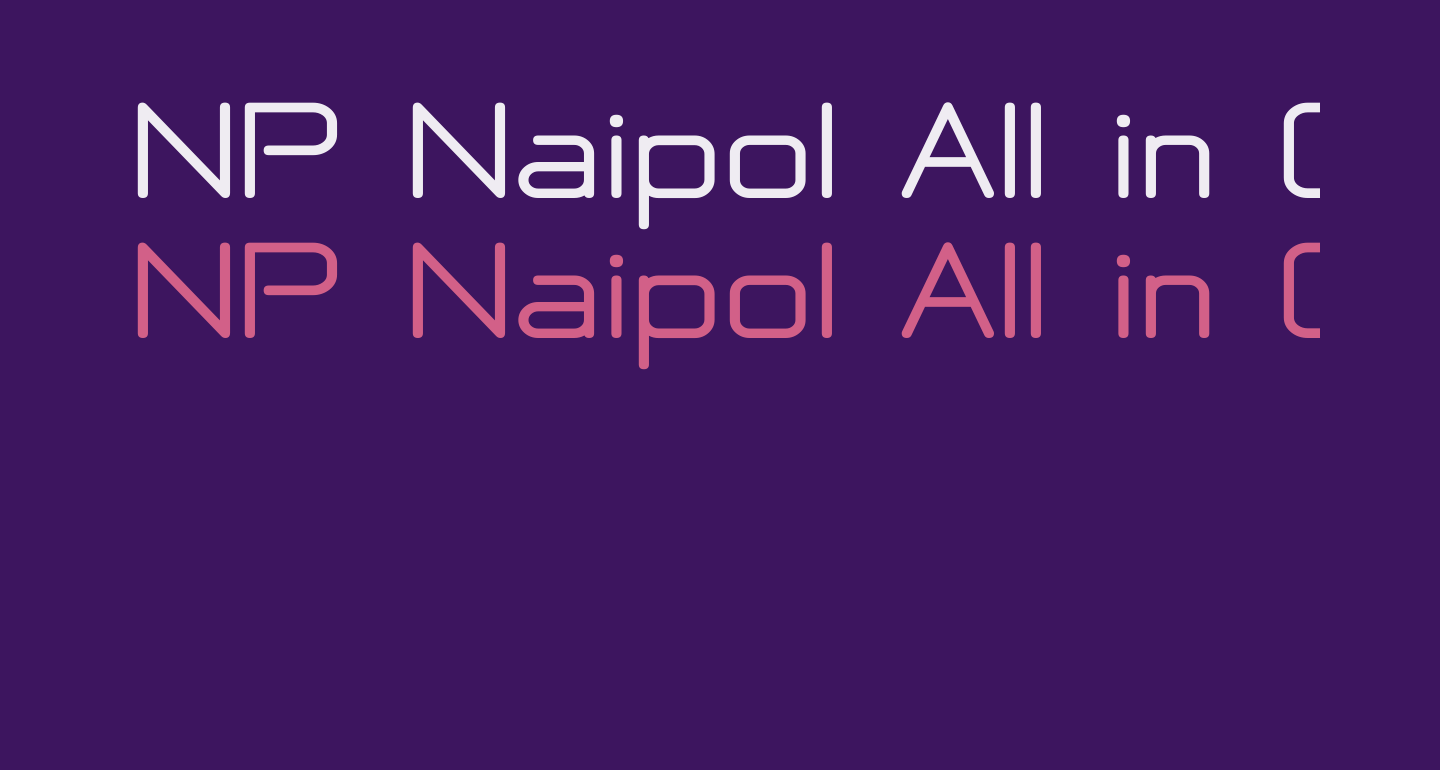 NP Naipol All in One Bold
