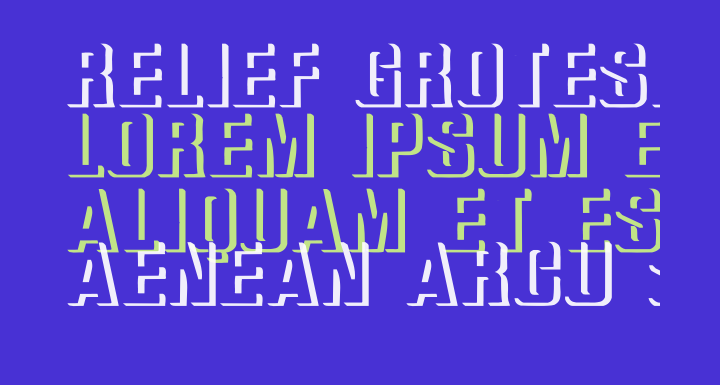 Relief Grotesk Bold