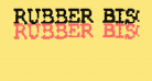Rubber Biscuit Bold