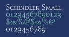 Schindler Small Caps