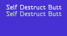 Self Destruct Button BB
